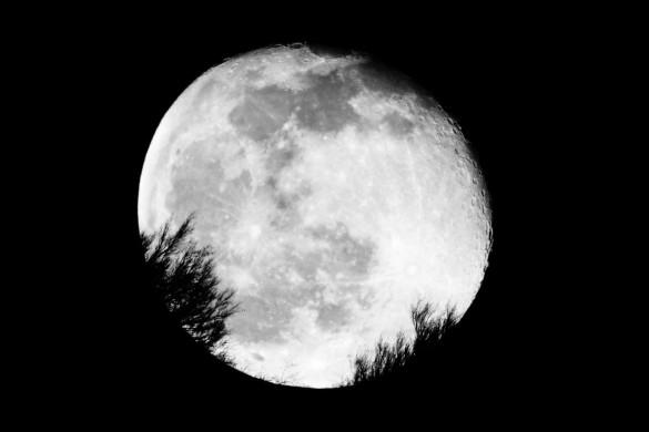 Siluetas_sobre_la_luna